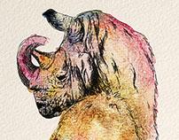 Rhinorilla