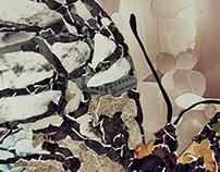 AP Art Studio: 2D Design - Nature    ('12)
