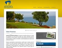 www.fincasmolina.es