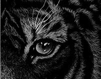 Drawings - Black Paper