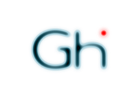 Logo & Website for Glocal Health Informatics