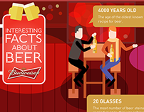 Budweiser Infographic Projects