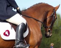 Ravasqueira wines - Lusitano Horses branding