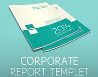 Annual / Half-Annual Corporate Report Templet