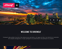 DIREWOLF - Photography Portfolio WordPress Theme