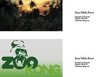 Infografia ZooKong