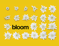 2016 Bloom Portfolio Review