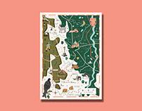 Illustrated Map Montbrison