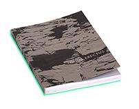 Locus Erectus: topography of desire