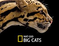 National Geographic Big Cats - Windows App