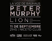 Grafica + Fotos | Peter Murphy en Niceto Club 11/09