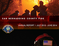 Annual Report - SBCoFD