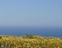 CF/CV XI-Santorini