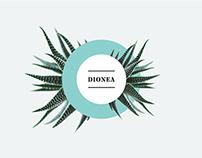 Dionea | Branding