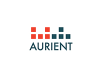 Aurient Earbuds