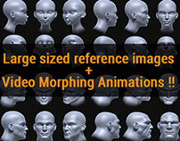 4 Heads reference for artists !! a Gumroad project