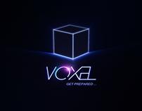 VOXEL - Logo animation