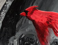 Cardinal in Black and White