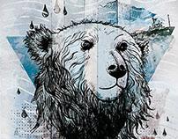 Free the Arctic30
