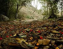 Sierras de Cordoba - Fotografia