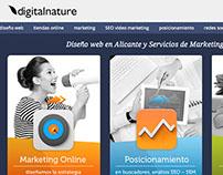 Diseño de Páginas Web en Alicante