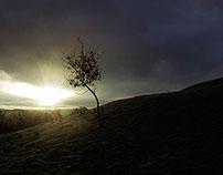 Morning Mist - River Lune