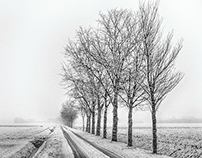 Winter part one