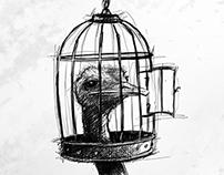 FİKRİNİN ESİRİ (prisoner of idea)