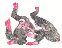 Les heures singes / Nos années sauvages
