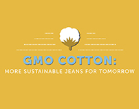 GMO Cotton Infographic