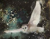 New Year Barn Owl