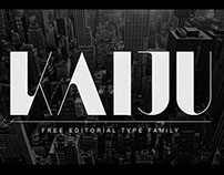 Free Font - KAIJU by Anthony James
