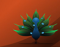Peafowl Vector