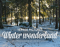 15 FREE IMAGES WINTER WONDERLAND
