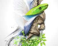 Warpthebird