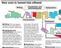 Graphic of Corn to Ethanol