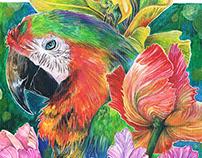 Иллюстрация с попугаем поэтапно Parrot (step by step)