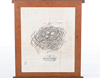 Bird Nest Series