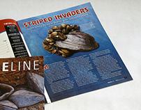 Twine Line magazine