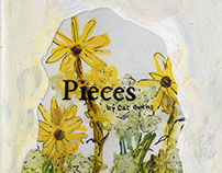 Pieces (a transparent book)