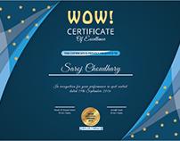 Bajaj Allianz - Certificate of Excellence