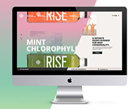 Rise Kombucha website