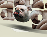 Type Series-BullDog