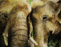 Elephants in pastel
