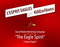 The Eagle Spirit - Marketing Campaign