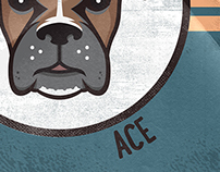 Ace the Boxer