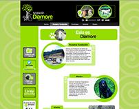 WEB DESIGN: FUNDACIÓN DIAMORE
