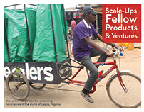 D-Lab Scale-Ups Fellowship & Ventures
