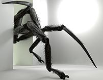 3D Arachnid Senses