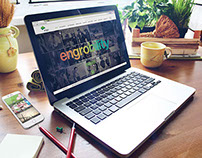 Engro Corporation Web Design